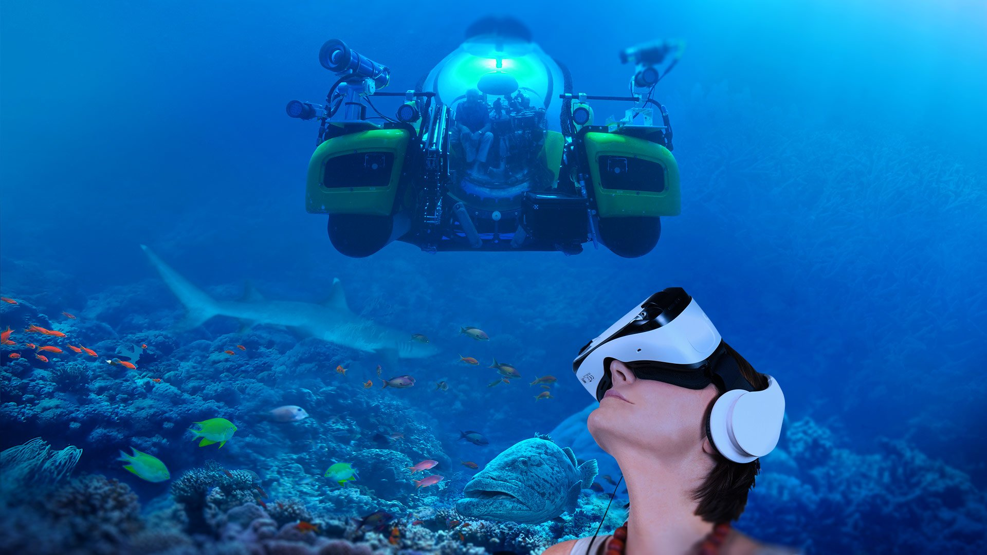 great barrier reef virtual reality